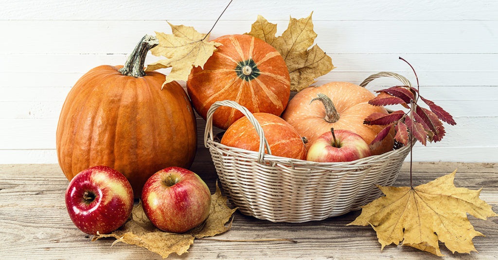 apples pumpkins